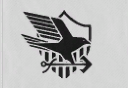 eagleunion.png.4d521648a5575f69edc30bf318dad16b.png